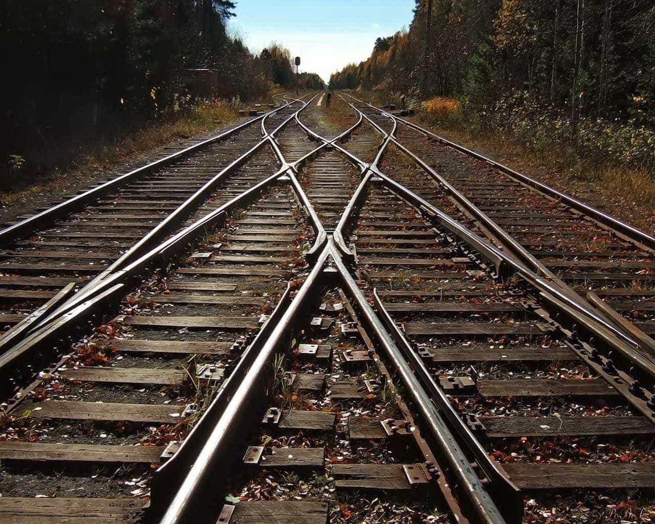 Leilão de trecho da ferrovia Norte-Sul pode parar na Justiça