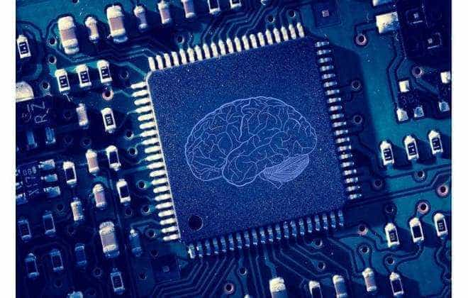 Cérebro humano não funciona como um computador