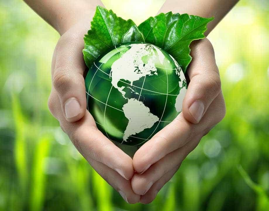 FAO e NDB planejam acordo para cumprir objetivo sustentável