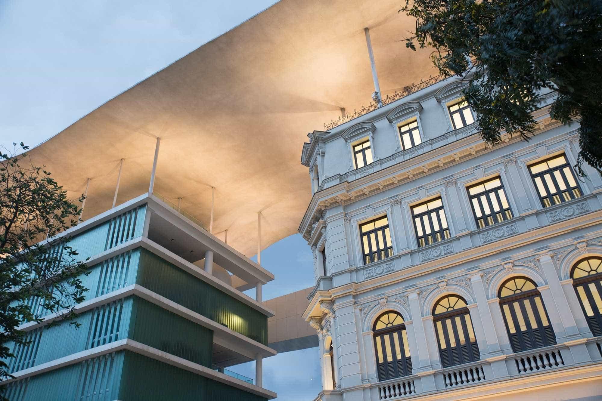 Petrobras apoia exposição e curso gratuitos sobre animação no MAM