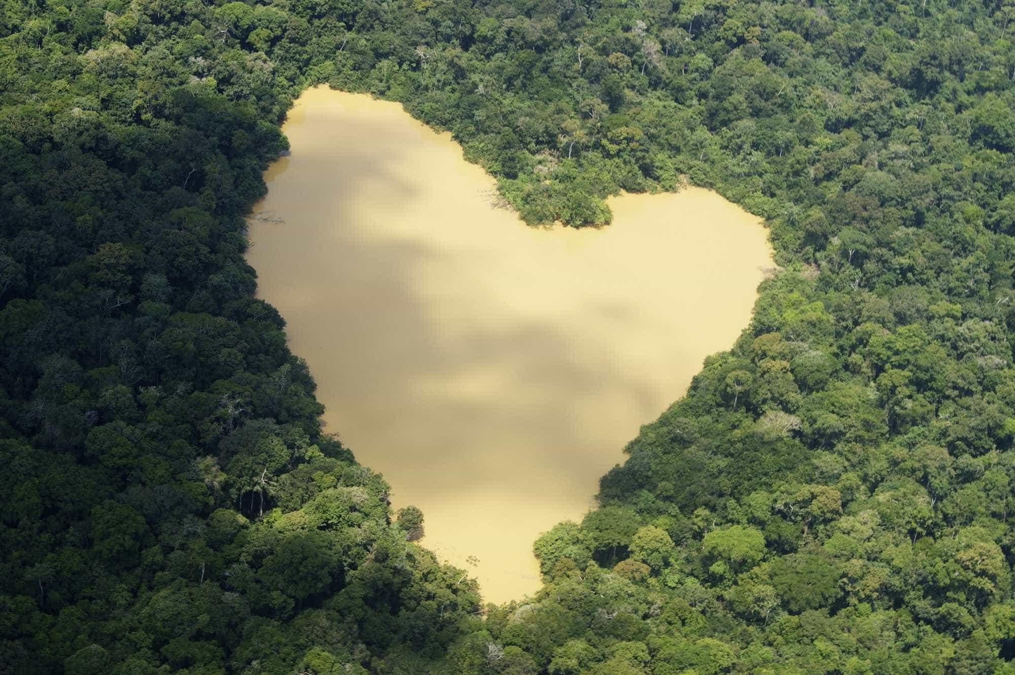 Pesquisa decifra causas de aumento de enchentes na Amazônia