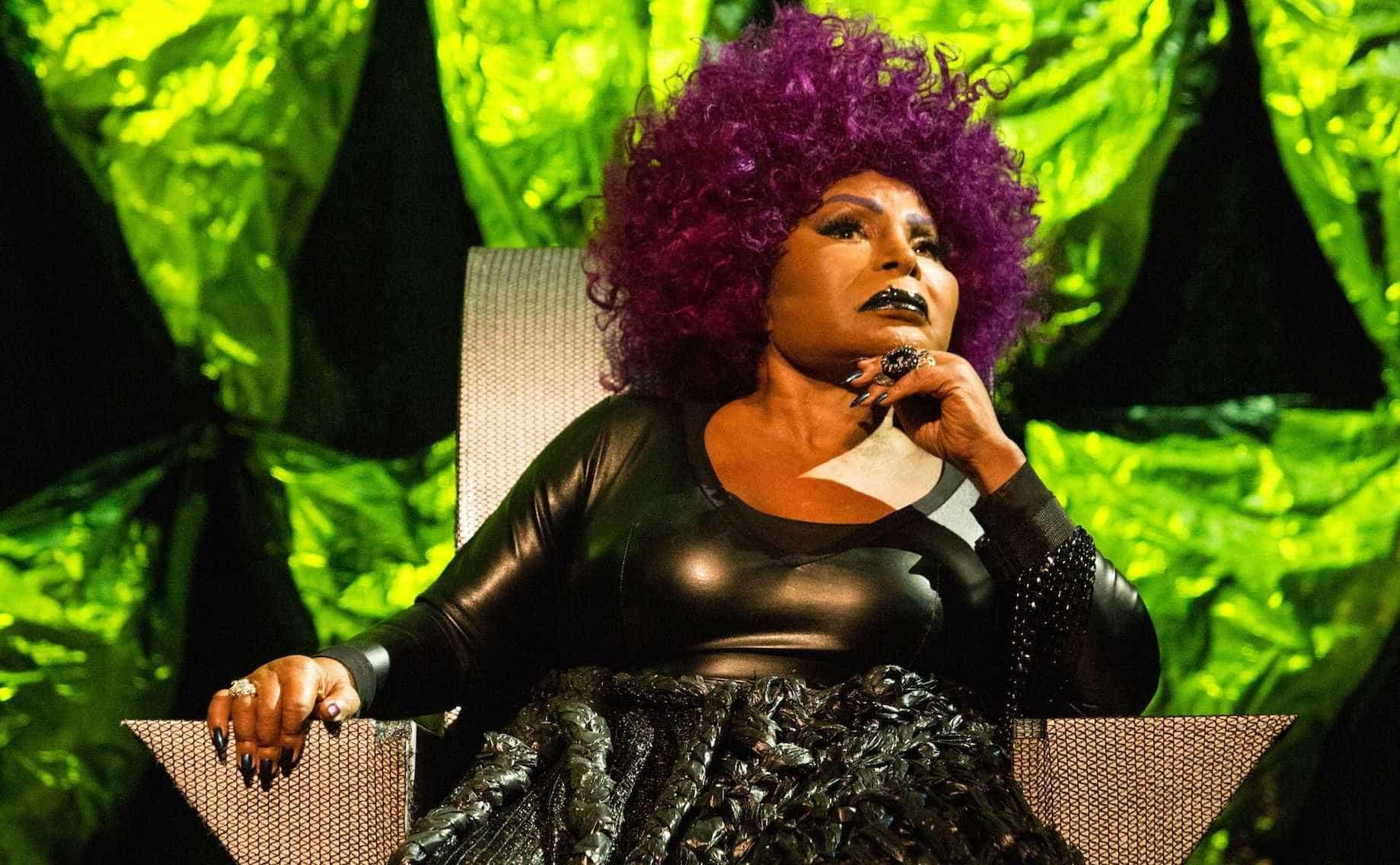 Festival Psicodália reúne Elza Soares e Anelis Assumpção no Carnaval