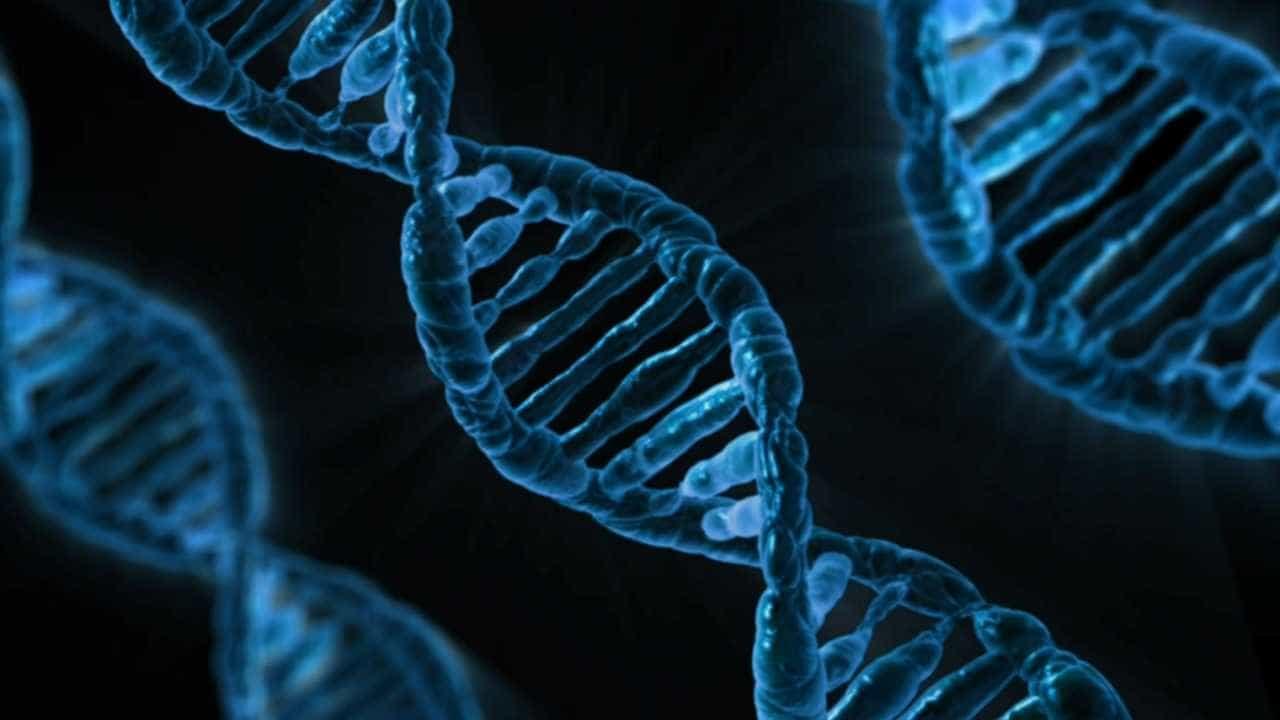 Cientistas dos EUA inovam ao editar genes