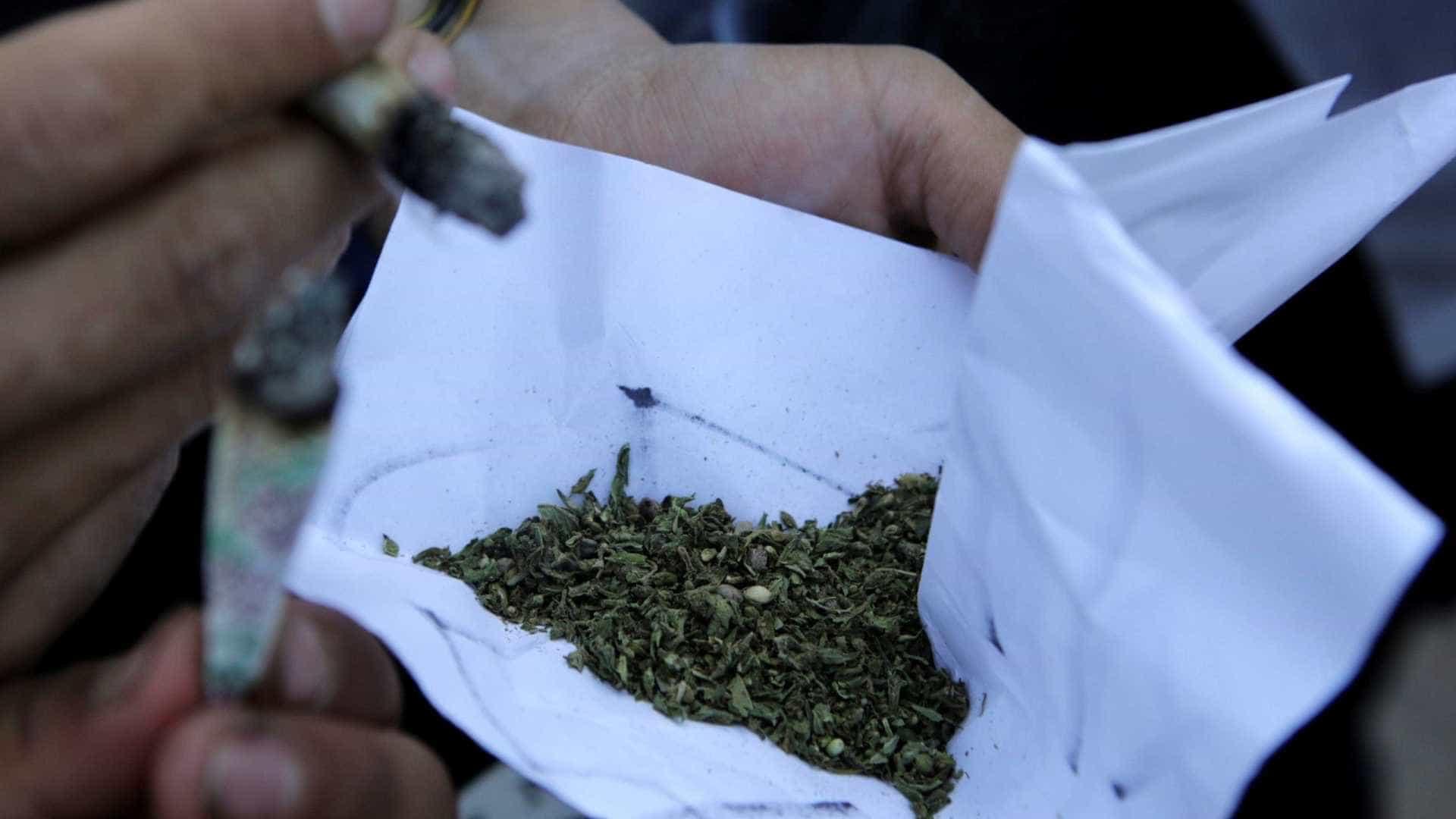 PF incinera quase duas toneladas de drogas em Curitiba