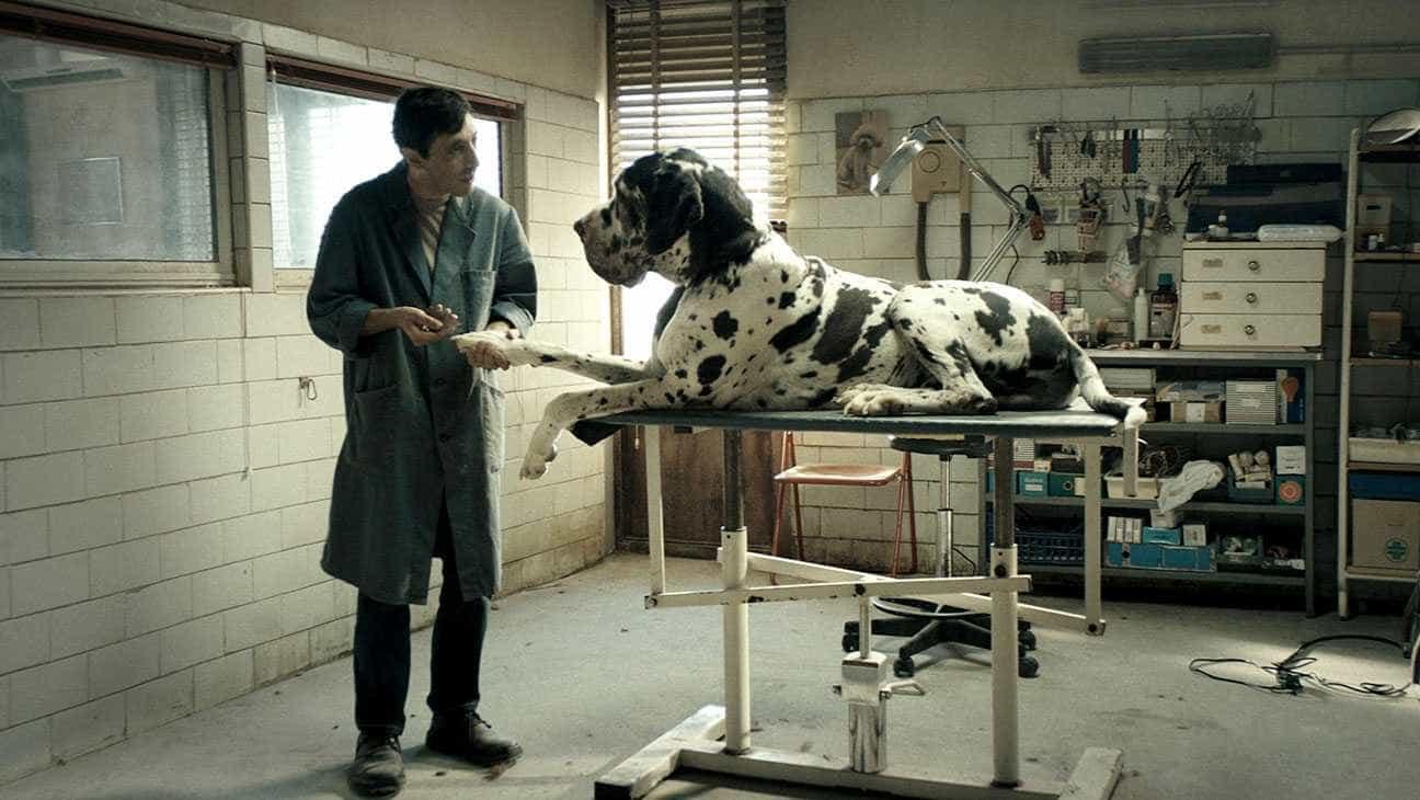 Concorrente à Palma de Ouro, 'Dogman' é aplaudido por 10 minutos