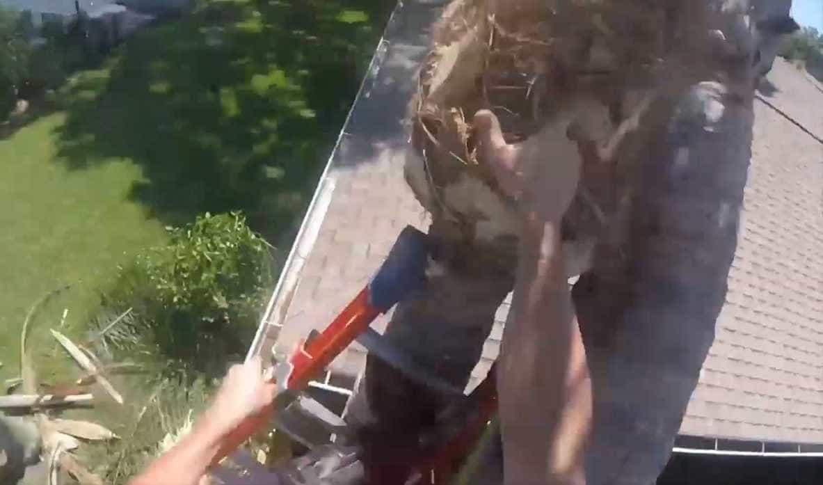 Homem derruba árvore em cima de uma casa nos EUA