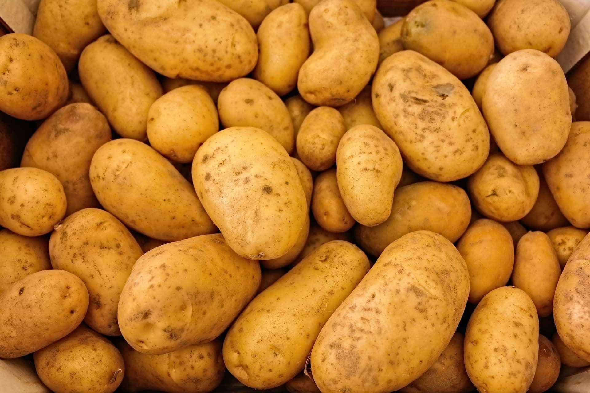 Em uma semana, preço do kg de batata passa de R$ 1,61 para R$ 17,50
