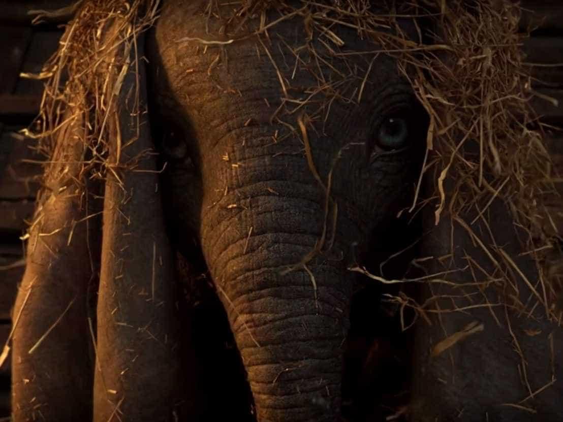 Nova versão de 'Dumbo', clássico da Disney, ganha 1º trailer