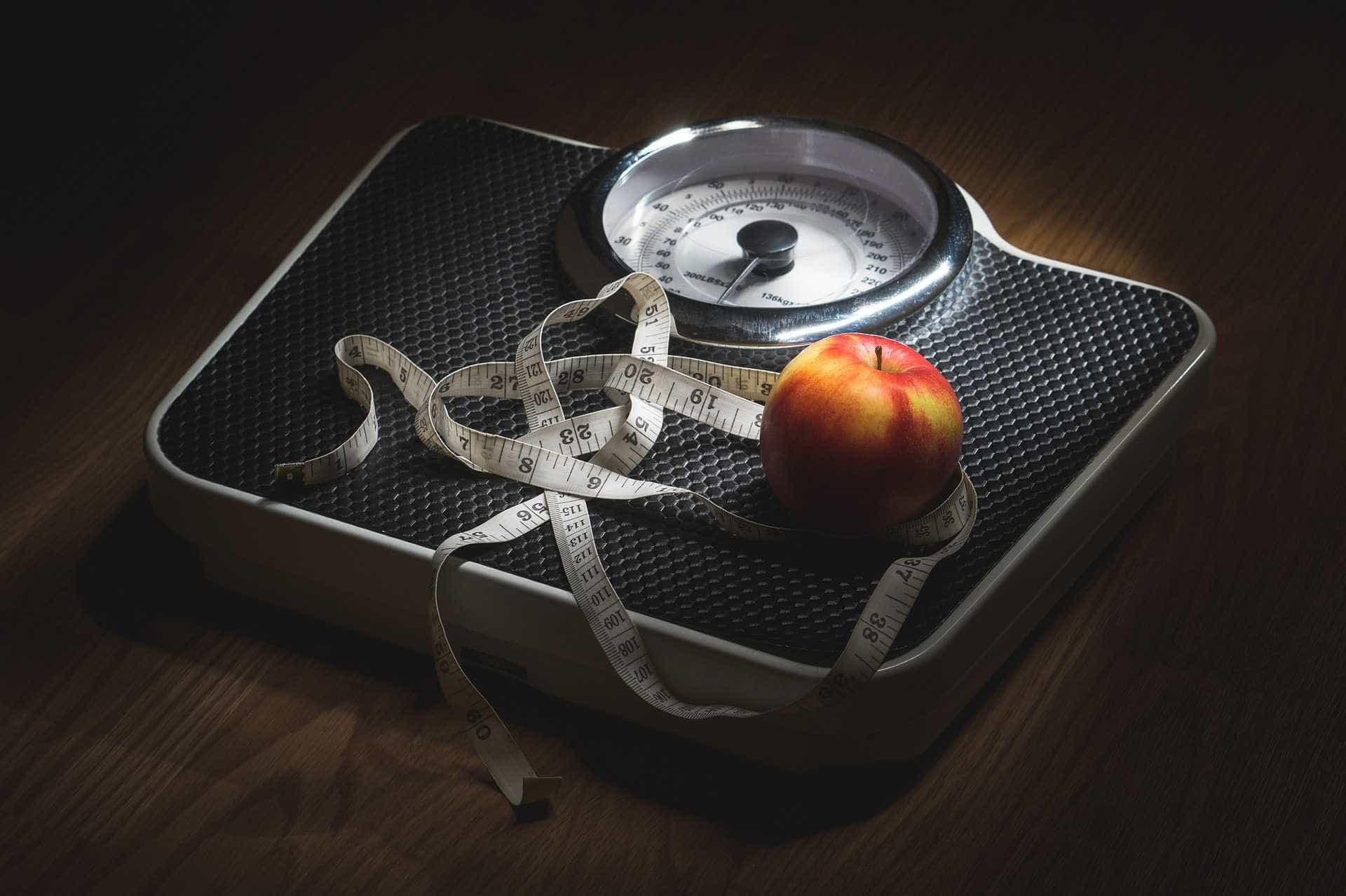 Obesidade atinge um em cada cinco adultos no Brasil