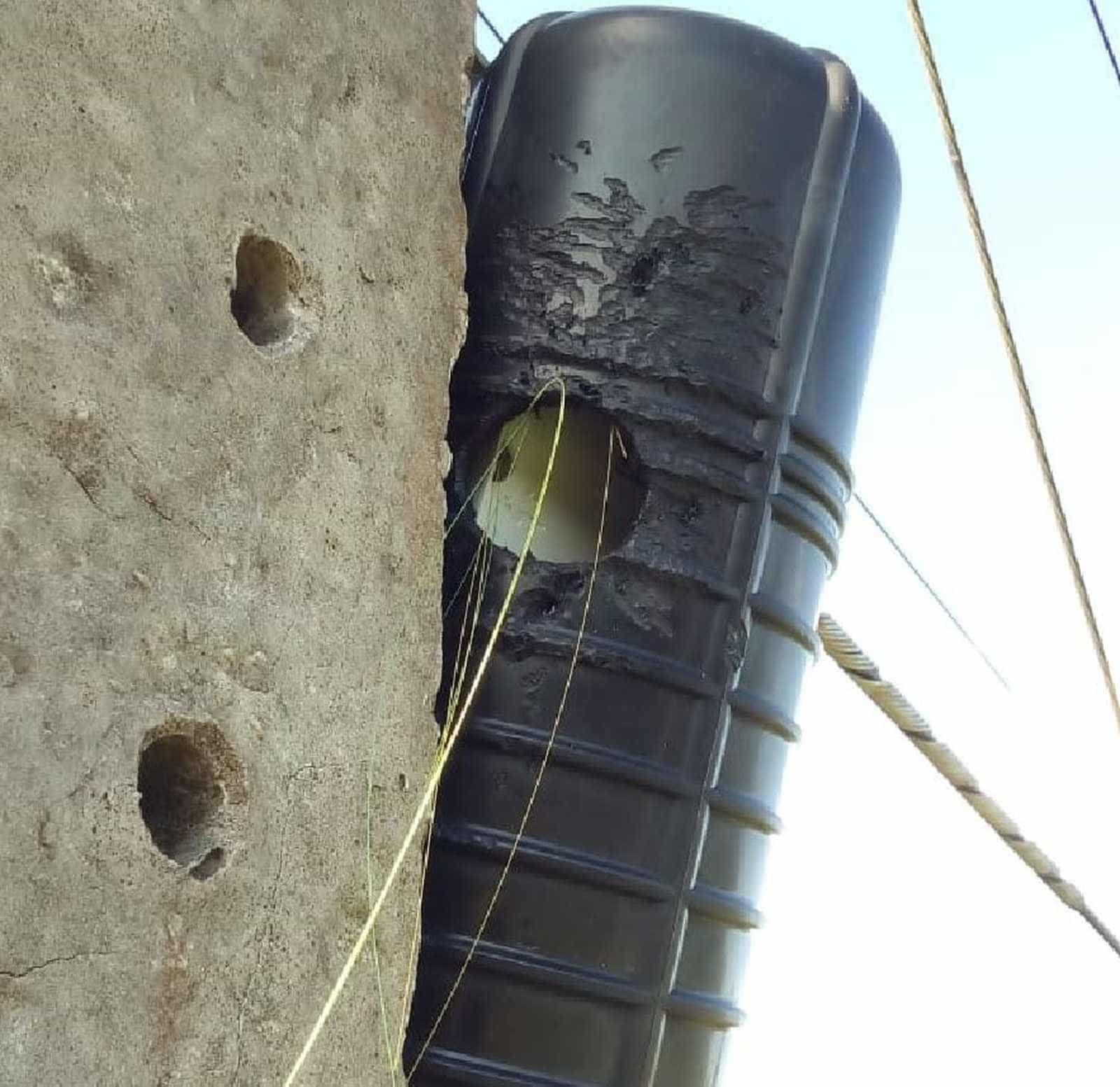 Pica-pau deixa cidade no AC sem internet e telefone por quase 5h