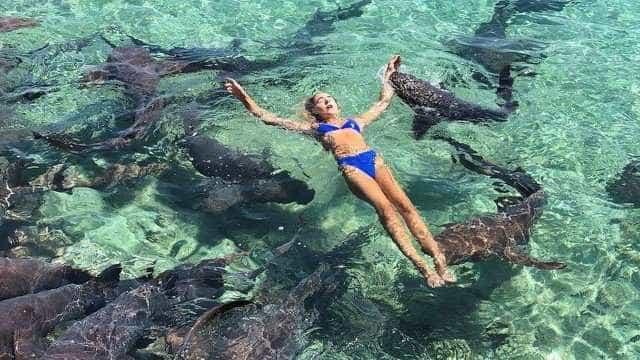 Mulher é mordida por tubarão ao tirar foto nas Bahamas
