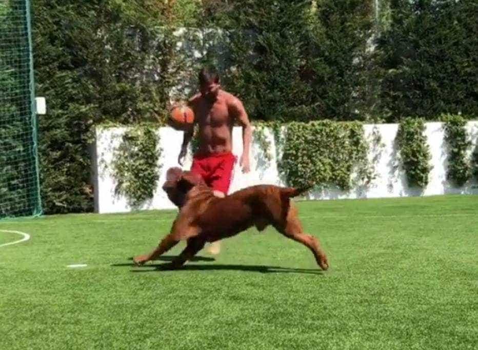 De férias, Messi joga bola com o cachorro e os filhos
