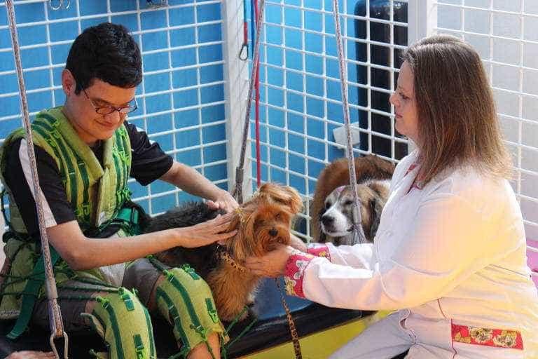 Terapia com animais ajuda a tratar transtornos psicológicos