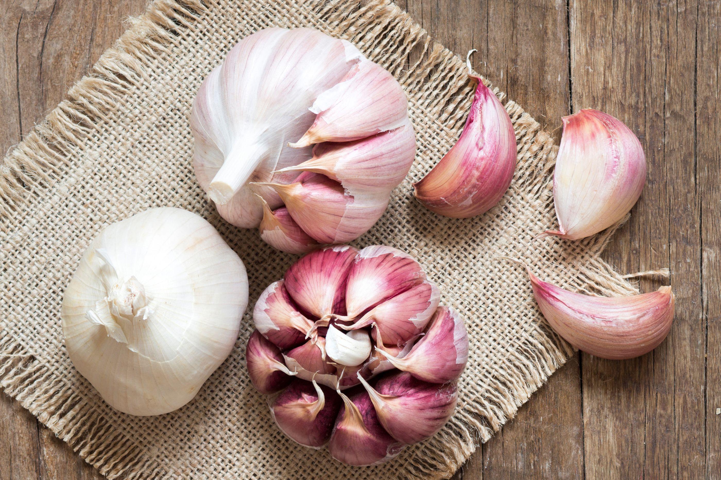 4 receitas caseiras para eliminar fungos em qualquer parte do corpo