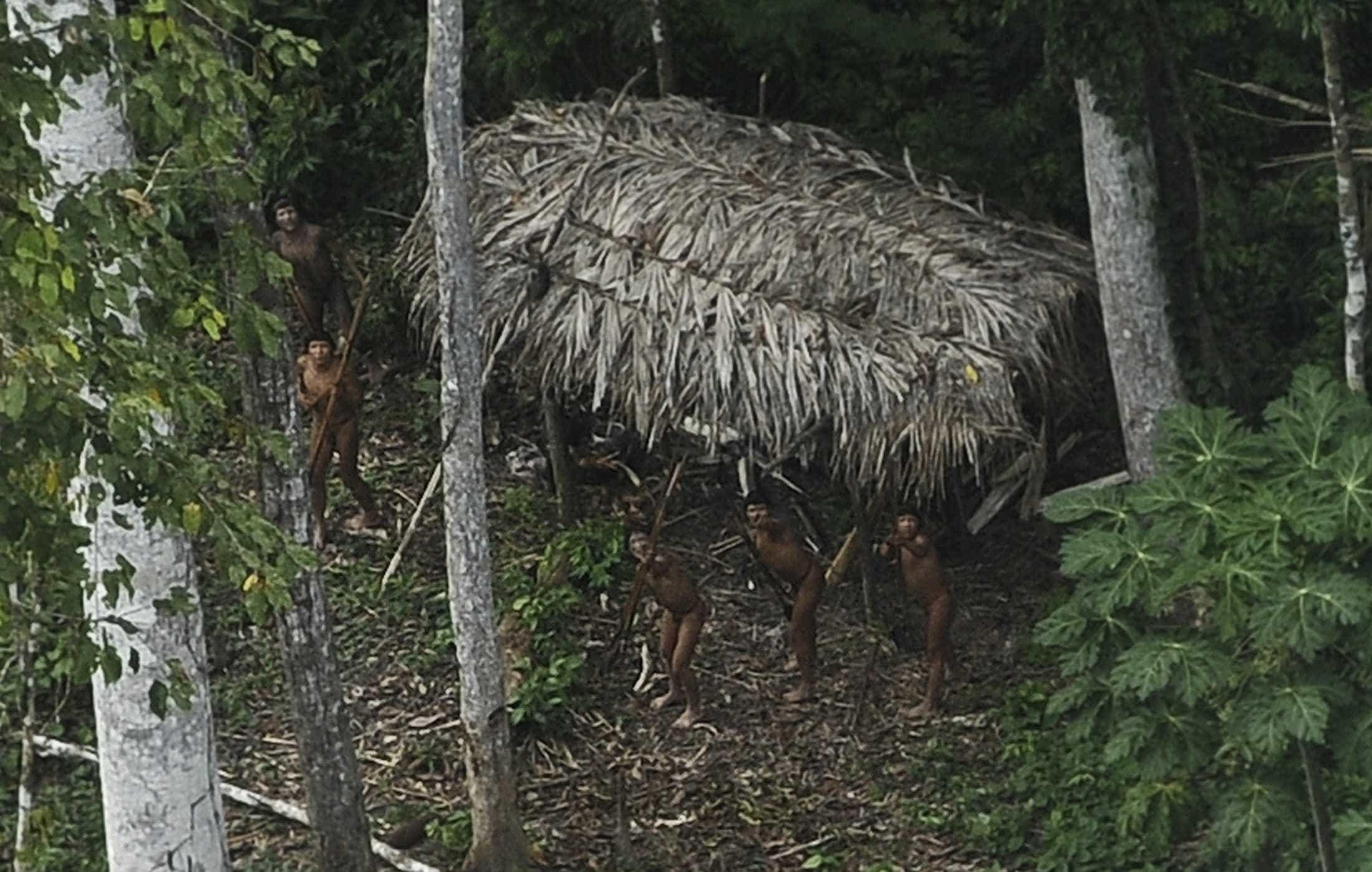 Damares diz que vai manter proteção a índios isolados da Amazônia