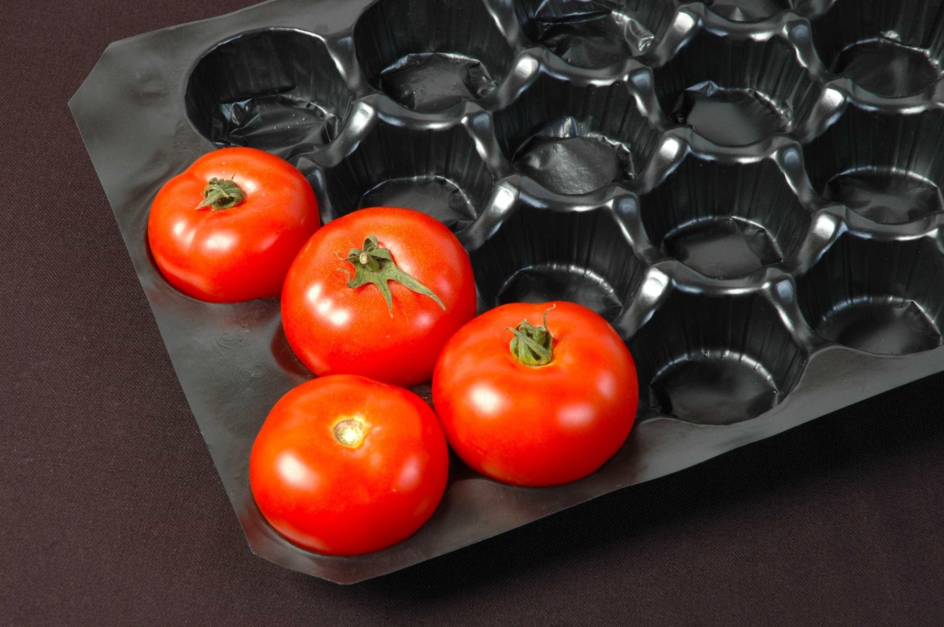 Saiba escolher e armazenar corretamente legumes e verduras
