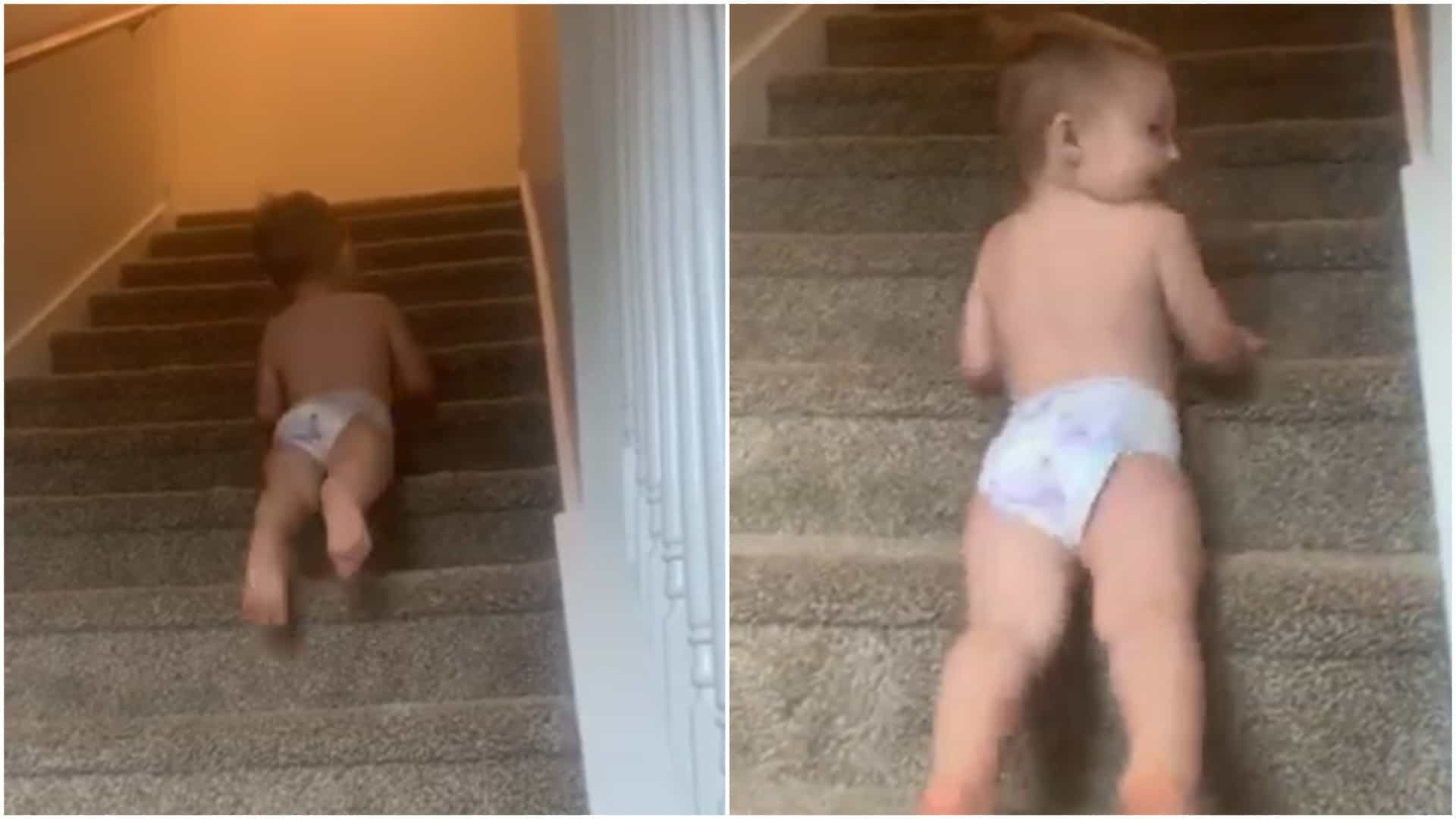 Bebê desce escadas de uma forma peculiar