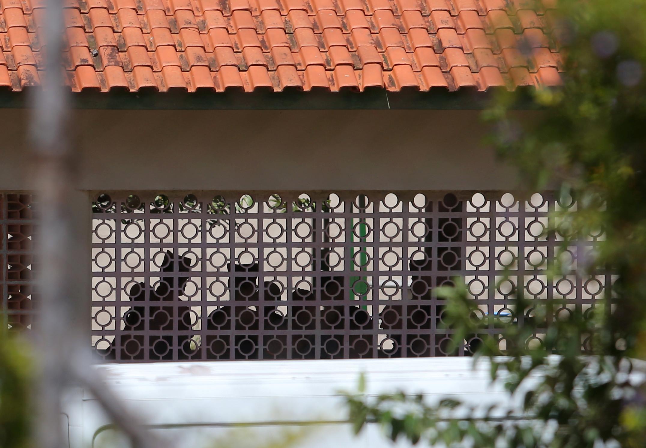 Masacre De Suzano: 'Queriam Matar Todo Mundo', Diz Sobrevivente De Massacre